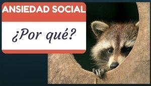 infografia-ansiedad-social-por-que-imagen-zorro-pequeño-escondido-tronco-arbol-psicoayudarteonline.es